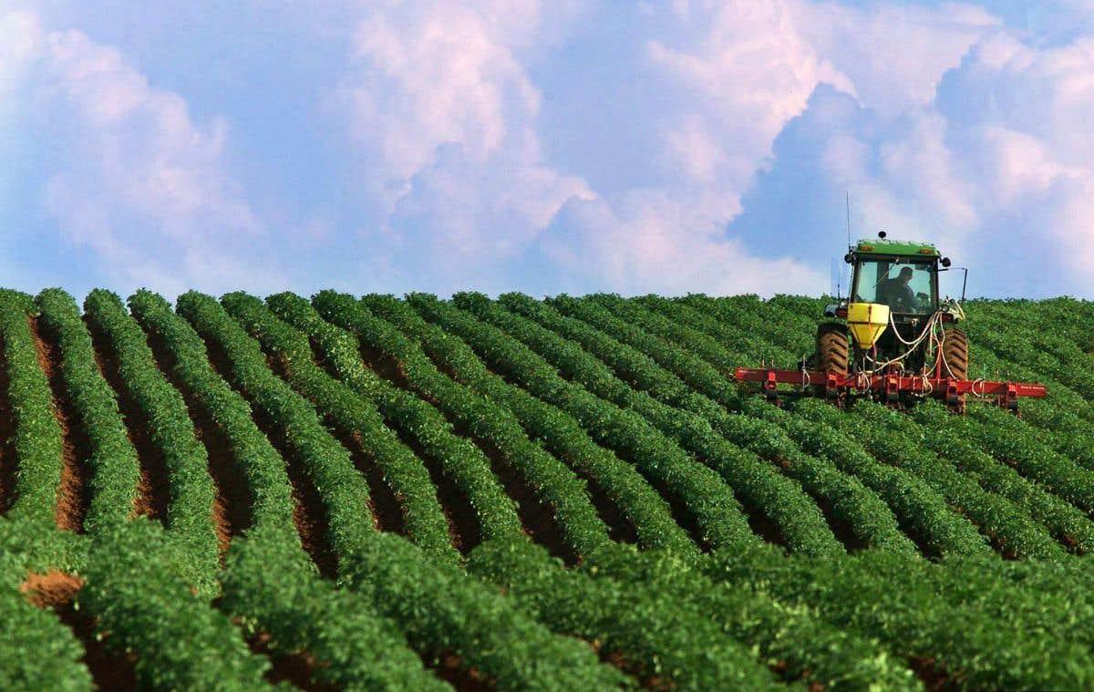 La conférence du jour: les pesticides