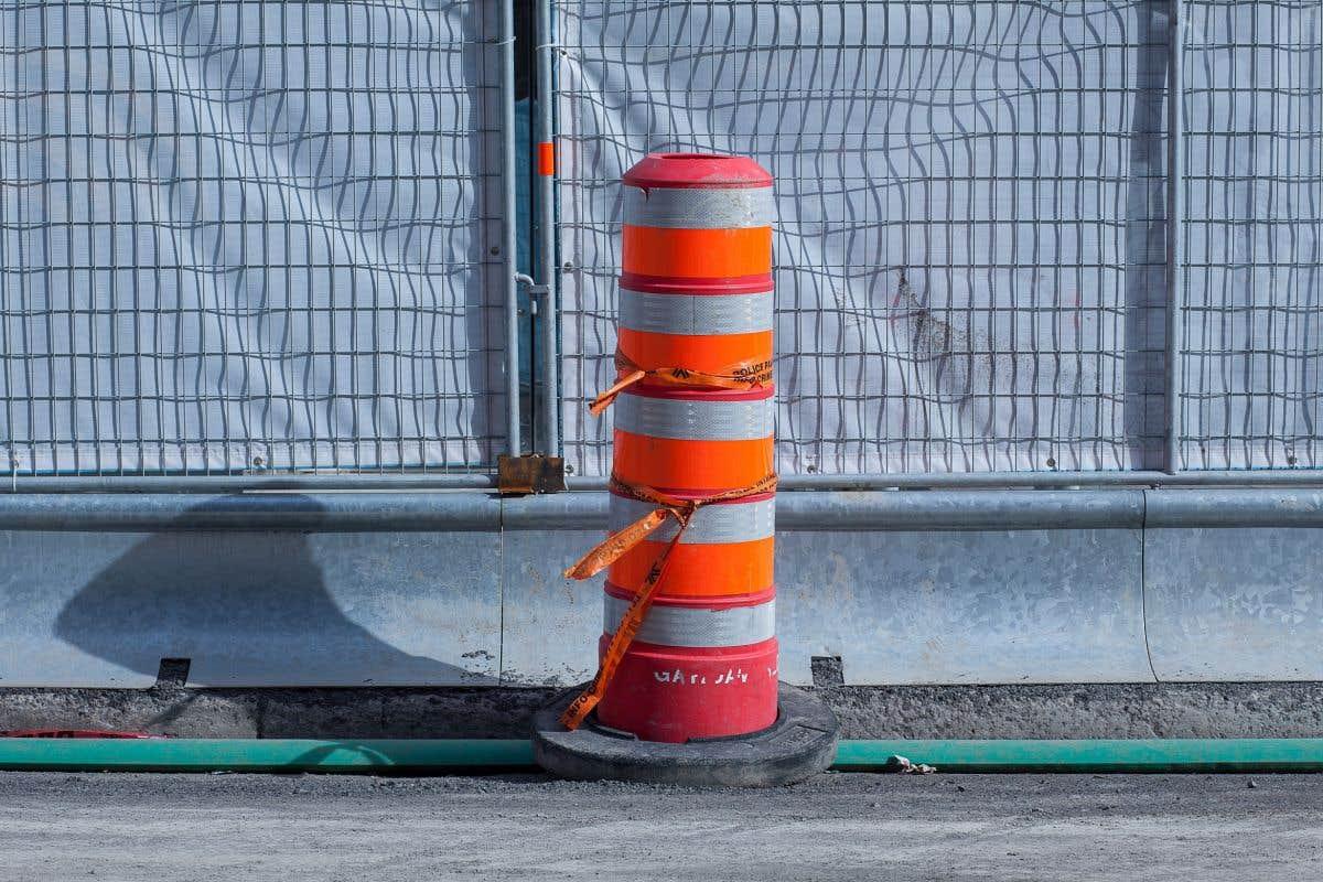 La saison 2021 des cônes orange