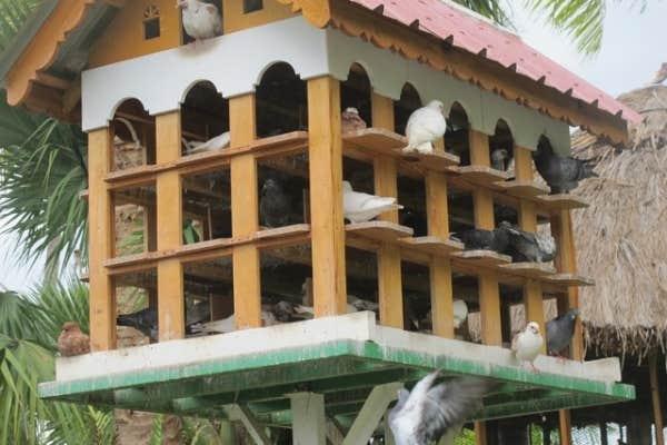 Pigeonnier de Moulin