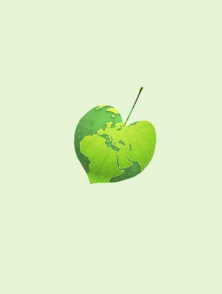 Vers l'espoir: une édition spéciale sur l'environnement