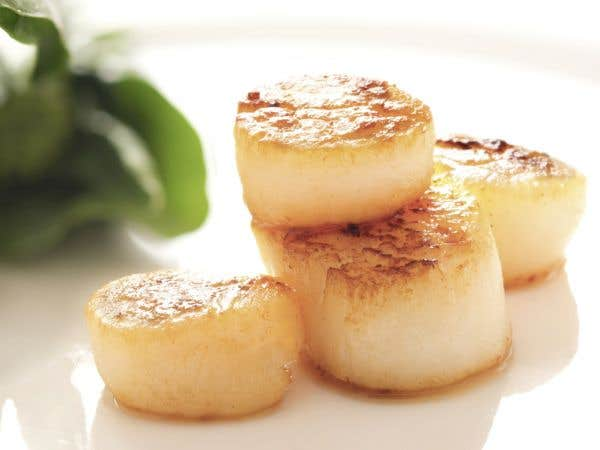 Mi-cuit de pétoncles, beurre blanc à la vanille
