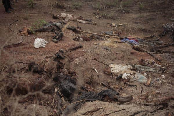 Boko Haram poursuit ses attaques au Niger et au Nigeria