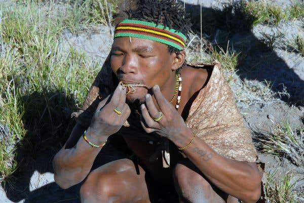 Le Kalahari, terre des Bochimans