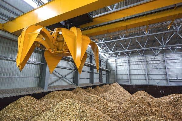 Biomasse: débouchés prometteurs en régions