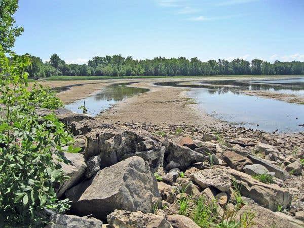 Montréal protégera l'écoterritoire contre le développement immobilier