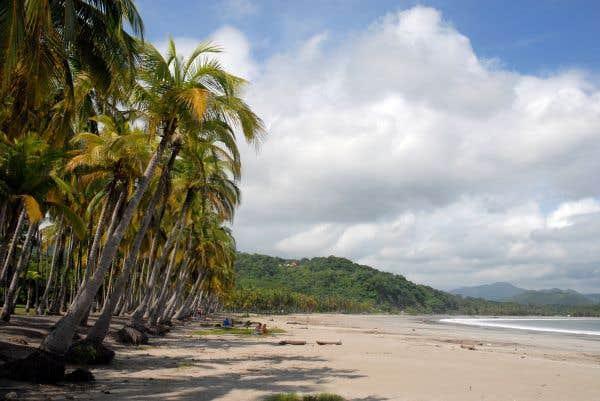 Le Costa Rica sans tracas avec sa smala