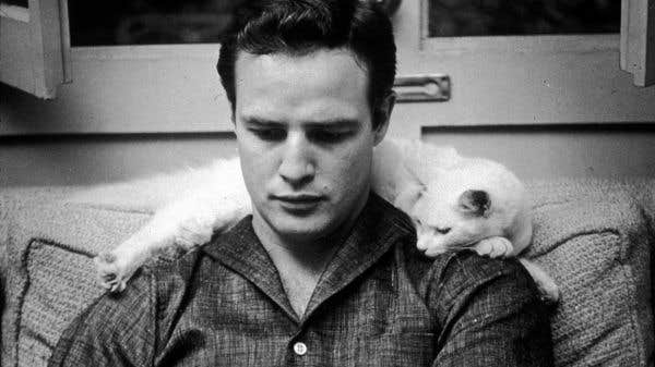 À l'écoute de Brando