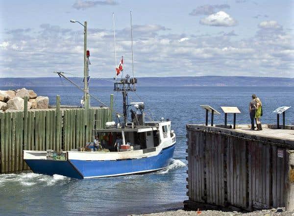 3 mots la pêche prise à lennemi la mer des miracles