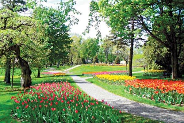 Le devoir for Jardin quebec