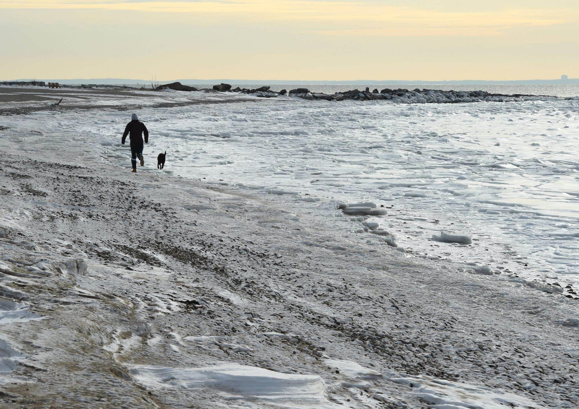 Le détroit de Long Island avait des allures apocalyptiques en début de semaine alors que le Nord-Est américain continuait de subir des températures très froides. Un homme promenait son chien le long du cours d'eau gelé.