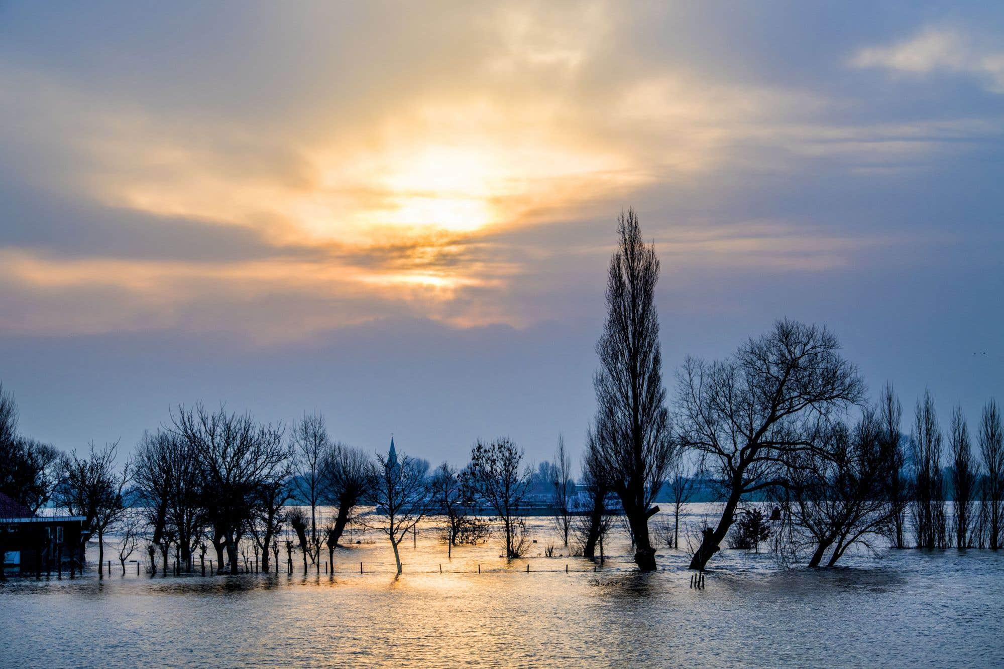 L'eau de la rivière Waal déborde sur le quai à Herwijnen à la suite de fortes pluies et de la fonte des neiges.