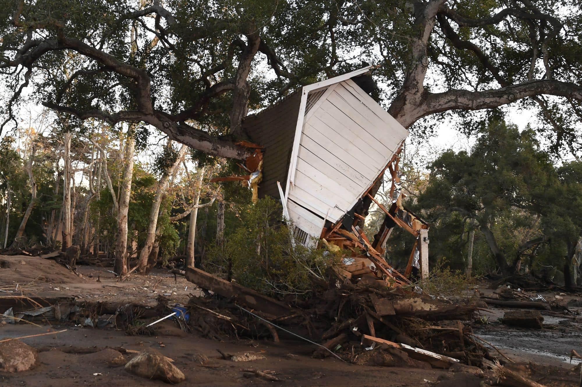 Un bâtiment, déraciné par un glissement de terrain, s'est retrouvé dans un arbre à Montecito. De fortes pluies ont déversé boue et débris provenant des collines vers Montecito et d'autres villes du comté de Santa Barbara. Les sauveteurs ont dû utiliser des chiens et des hélicoptères pour rechercher les victimes des glissements de terrain qui ont fait au moins 17 morts dans cette région de la Californie qui se remet encore des féroces incendies du mois dernier.