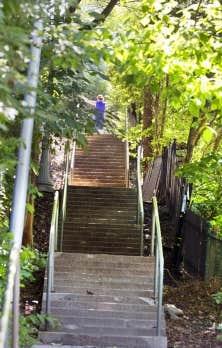 Un des multiples escaliers cachés de Westmount que seuls les initiés empruntent pour gravir la butte.