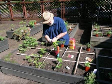Carr ment facile le potager en carr s le devoir for Jardin en carres plan