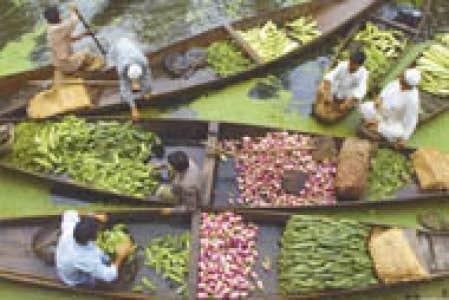 Parfums d 39 orient le devoir for Jardin flottant