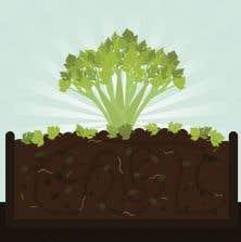Le sol est vivant, rempli de milliards d'êtres vivants qui transforment sans relâche la matière organique en matière minérale pour nourrir nos végétaux.