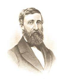 L'œuvre du philosophe américain Henry David Thoreau est revisitée dans «Une année dans les bois».