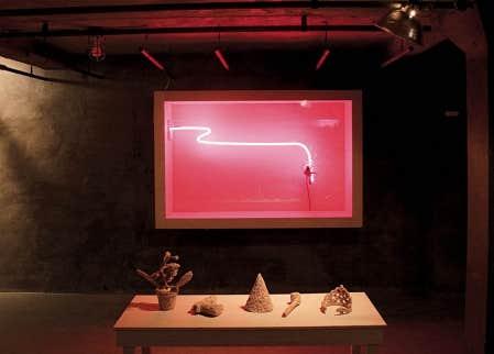 Vanitas, Patrick Bérubé, exposition Accident, 2010.