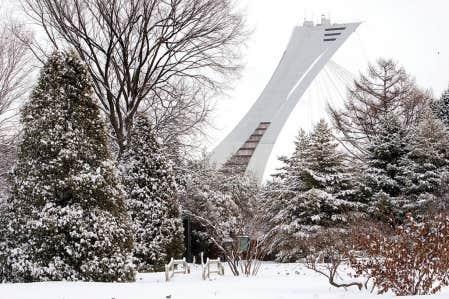Salon habitat ville et banlieue tout savoir afin de - Salon de l habitation montreal stade olympique ...