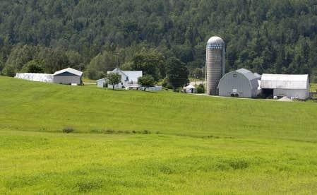 article societe rurale quebec