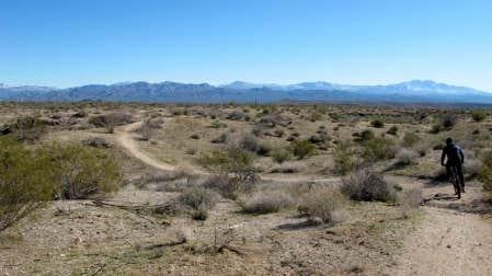Le sol du d&eacute;sert de Scottsdale est &agrave; la fois sablonneux et ferme. Le relief est au go&ucirc;t du client, qu&rsquo;il soit cycliste confirm&eacute; ou d&eacute;butant. <br />