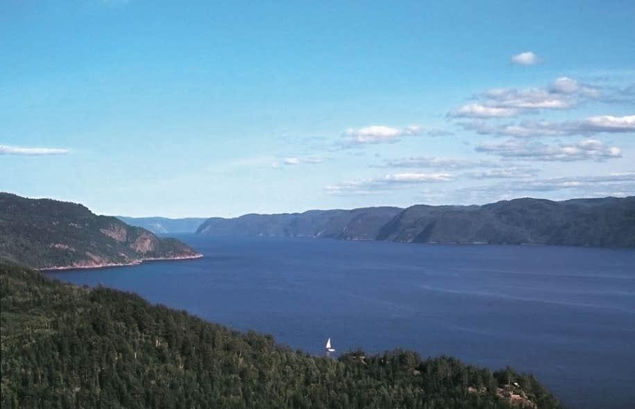Le parc marin du Saguenay -Saint-Laurent, d'une superficie de 1000 km2, est la seule aire marine protégée au Québec. Il a été créé en 1998, notamment dans le but de protéger une partie de l'habitat du béluga, une espèce menacée de disparition.