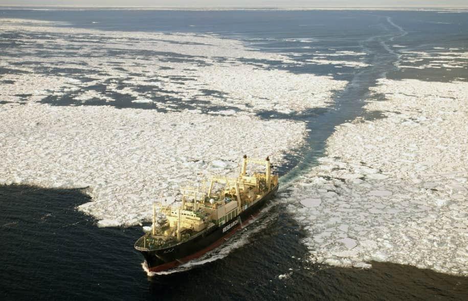 Le navire-usine japonais Nisshin Maru (photo) &mdash; o&ugrave; sont d&eacute;pec&eacute;s les rorquals abattus par les navires-harponneurs &mdash; est entr&eacute; en collision &agrave; plusieurs reprises, fin f&eacute;vrier, avec le bateau Bob Barker, de l&#39;organisation Sea Sheperd.<br />