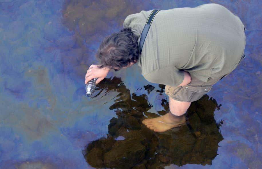 La rivière Chaudière examinée deux jours après l'explosion causée par le déraillement d'un train rempli de pétrole à Lac-Mégantic.