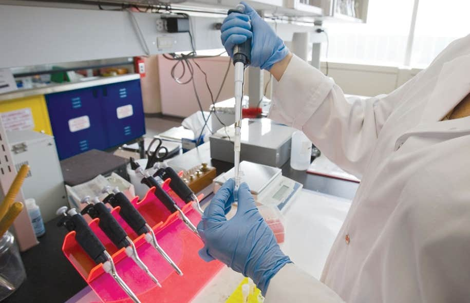 Le taux de réussite aux compétitions pour obtenir des subventions des Instituts de recherche en santé du Canada n'a pas dépassé les 18 % au cours des dernières années.