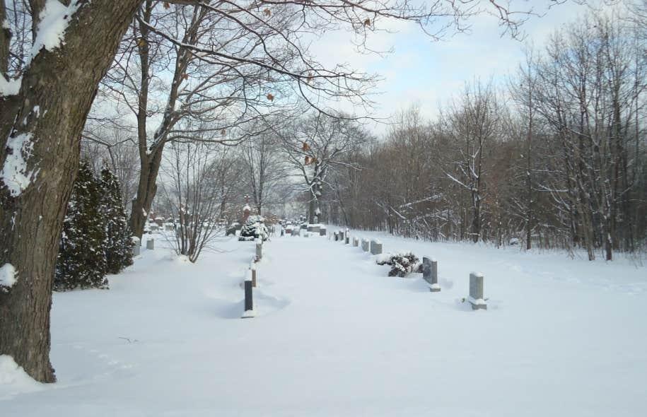 Le cimetière Saint-Patrick