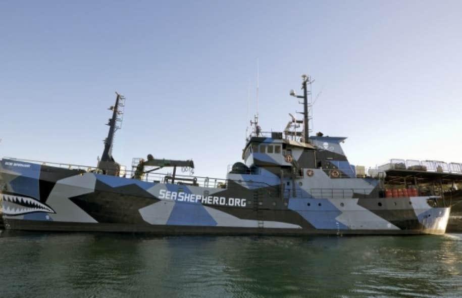 Un navire-harponneur a heurt&eacute; de plein fouet le <em>Bob Barker</em>, un bateau de l&rsquo;organisation Sea Shepherd.