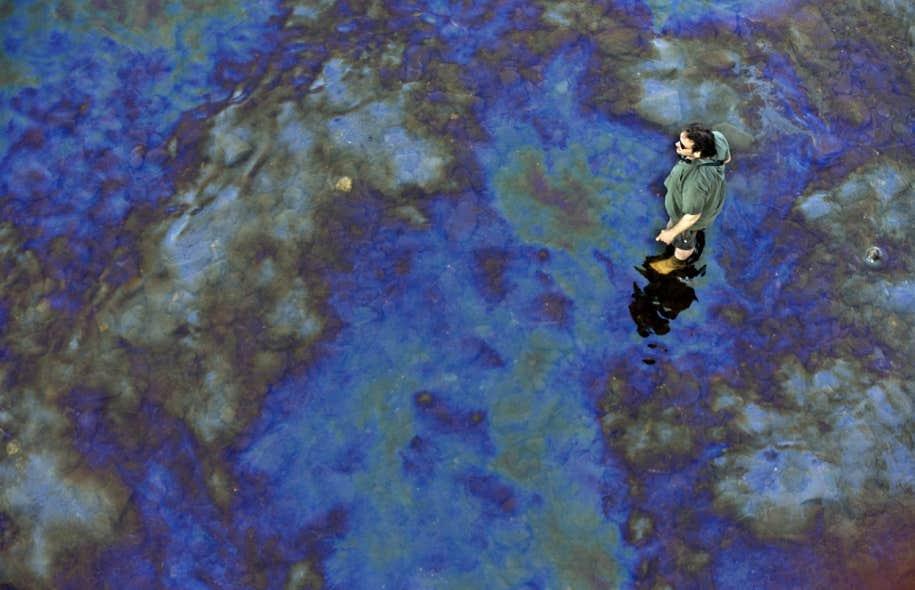 Dans les jours qui ont suivi la catastrophe ferroviaire de juillet dernier à Lac-Mégantic, le pétrole déversé dans la rivière Chaudière était bien visible à la surface de l'eau (ci-dessus). Du pétrole a de nouveau été observé dans l'eau au cours des derniers jours en raison de la crue printanière.