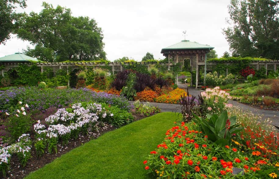 Le jardin des nouveaut s revisit le devoir for Restaurant jardin botanique