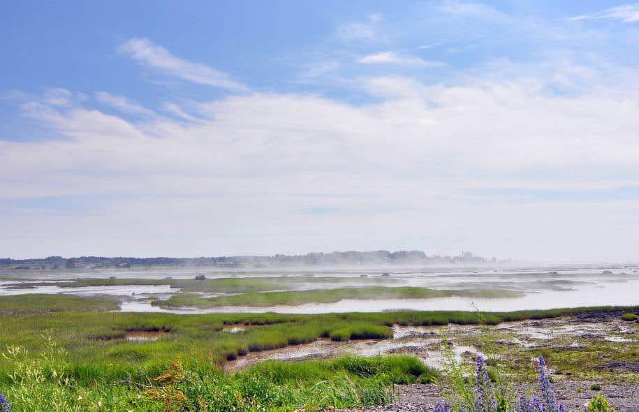 TransCanada a choisi de faire passer son pétrole de la rive nord à la rive sud du fleuve Saint-Laurent, à 20 kilomètres à l'ouest de la ville de Québec, dans une réserve naturelle.