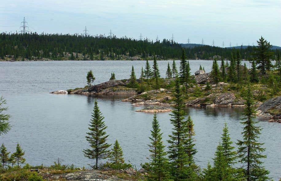 Les Métis québécois poursuivent leur quête de reconnaissance Image