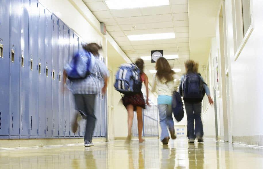 La CSDL est l'une des plus grandes commissions scolaires au Québec. Elle compte plus de 45 000 élèves et 7000 employés.