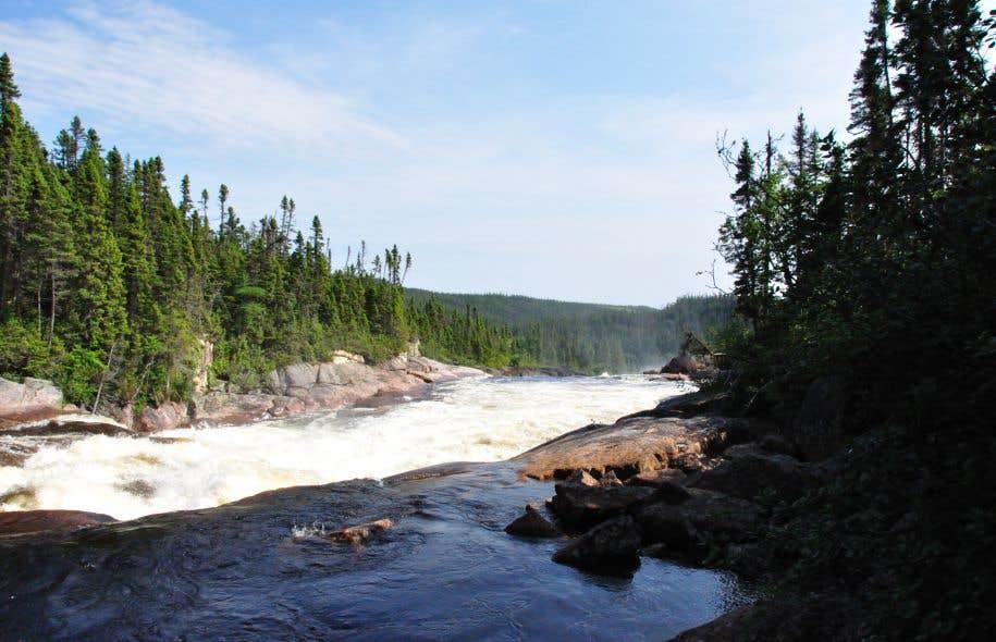 Les représentants de la communauté reprochent à Hydro-Québec d'avoir inondé des bassins sans les avoir avertis, en y laissant plus de 50 % de la ressource forestière.
