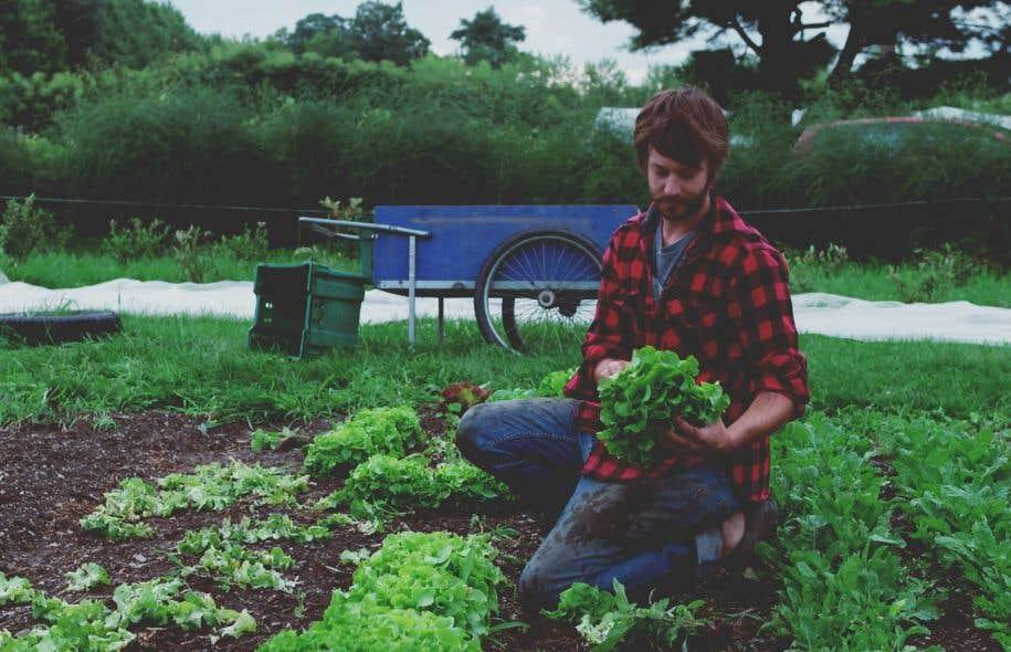 L'agriculteur Jean-Martin Fortier