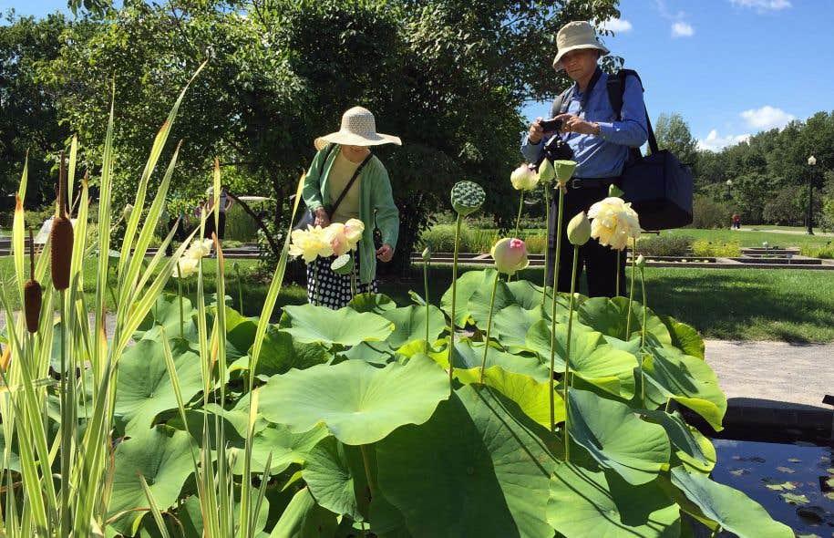 Jardin de d lices le devoir for Amis jardin botanique