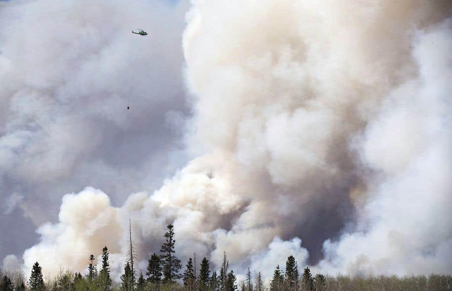 La région de Fort McMurray est dominée par la forêt boréale, un écosystème particulièrement vulnérable aux feux.