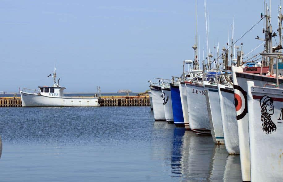 Les représentants de l'industrie des pêches et les communautés des Premières Nations de cinq provinces ont en effet réclamé l'an dernier la suspension de «toute activité de développement pétrolier dans le golfe du Saint-Laurent».