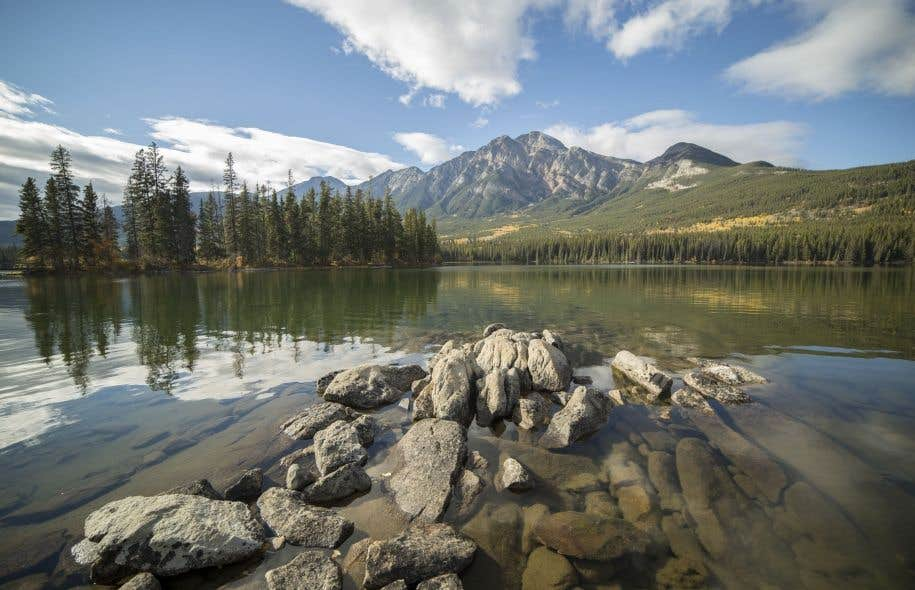 La Chaire de recherche du Canada en philosophie des sciences de la vie propose trois principaux axes de recherche. Le premier porte sur les principes de l'évolution chimique. Le second axe de recherche est l'épistémologie des concepts de la biodiversité. Le troisième et dernier axe de recherche est celui de l'explication en biologie.