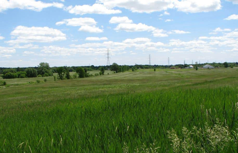 Le 4 novembre, la Corporation de l'aéroport de Mascouche a reçu le feu vert d'Ottawa pour déménager les installations de l'actuel aéroport, tout près, à la limite des territoires de Mascouche et de Terrebonne.