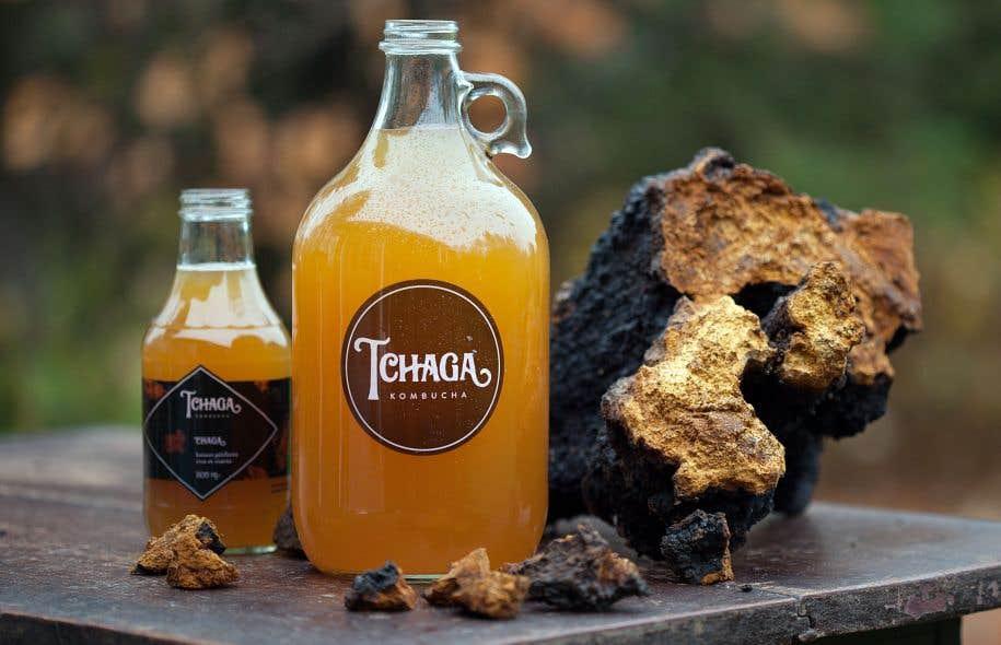 Les bouteilles de Tchaga Kombucha se retrouvent dans plusieurs commerces et restaurants de Sherbrooke et des environs, mais aussi sur l'île de Montréal, où elles trônent sur les tablettes de quelques adresses.