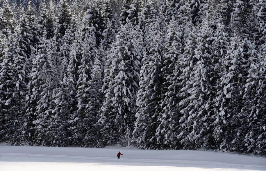 L'Europe est touchée par une vague de froid depuis la fin de la semaine dernière.
