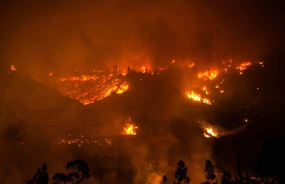 Plus de 9.000 personnes mobilisées pour combattre les feux de forêt — Chili