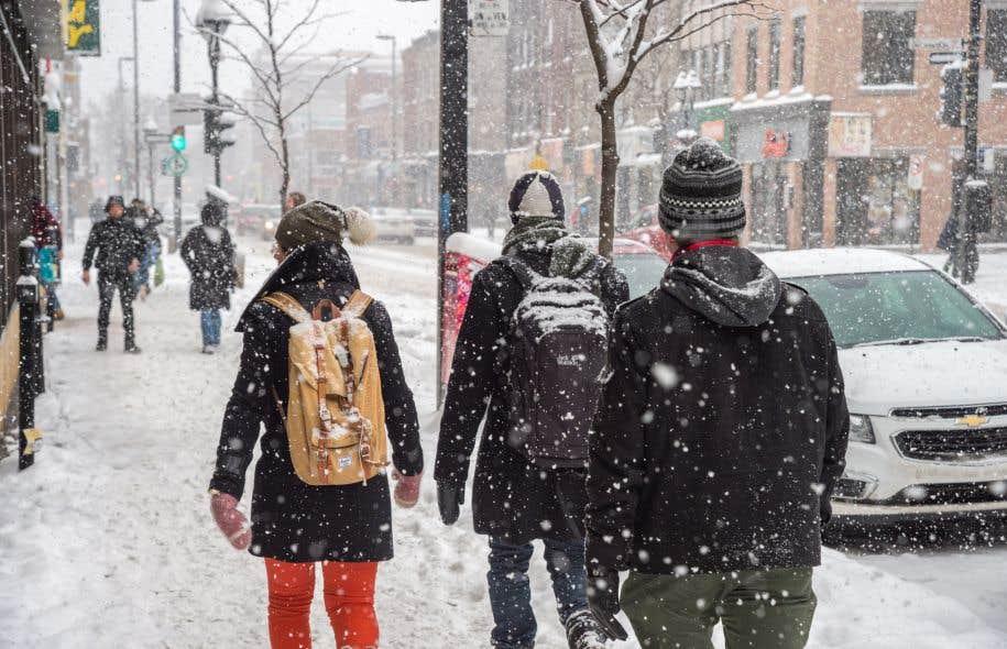 L'un des facteurs du recul du français au Canada est «l'absence d'un réseau adéquat d'écoles francophones à l'extérieur du Québec», soutiennent les signataires.