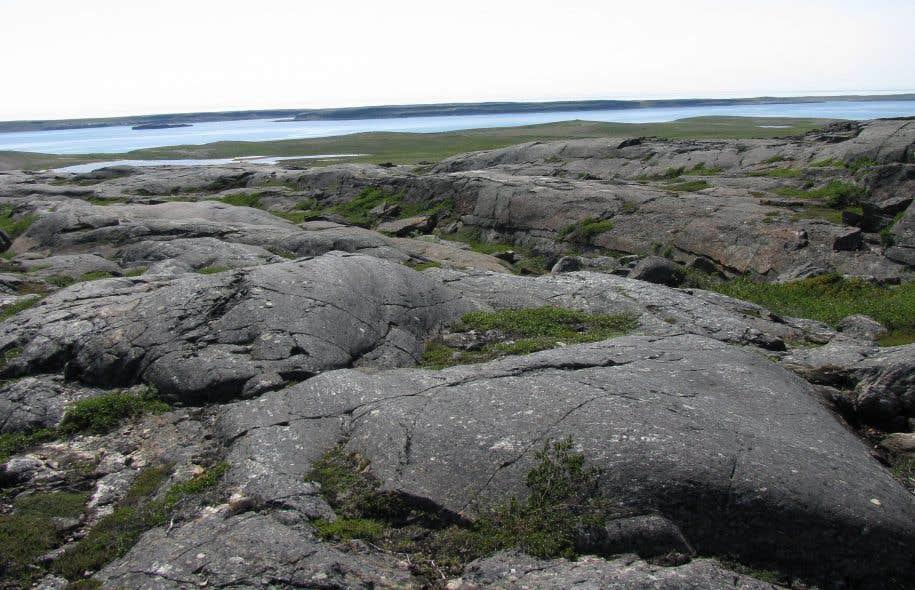Les microfossiles étaient enfouis dans des couches de quartz du site géologique de la ceinture de Nuvvuagittuq.