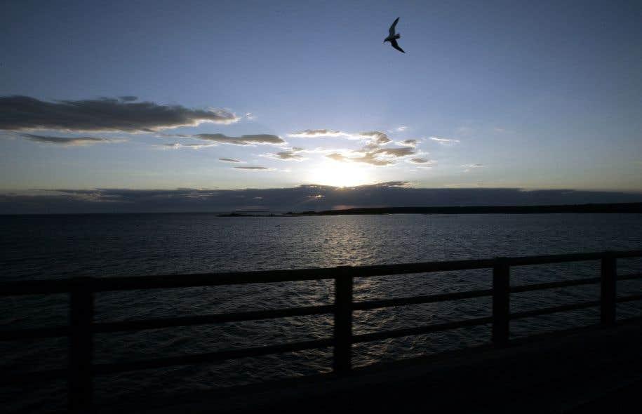 La première proposition budgétaire du nouveau président prévoit l'élimination du financement de l'Initiative de restauration des Grands Lacs.