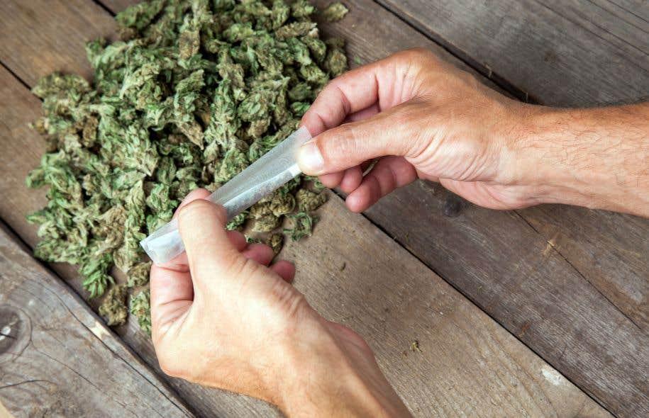 Certains estiment que le marché de la marijuana médicale à lui seul pourrait valoir autour de 1,8 milliard d'ici 2021.